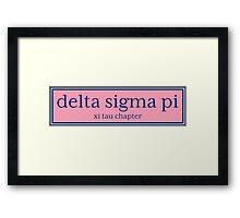 Delta sigma pi Vineyard  Framed Print
