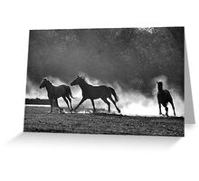 HORSE SILHOUETTES IN BLACK AND WHITE Greeting Card