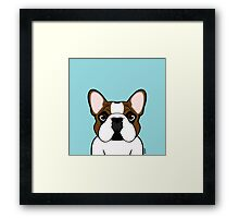 Frenchie - Fawn Pied Framed Print