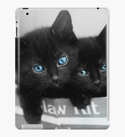 Blue Eyed Kittens iPad Case/Skin