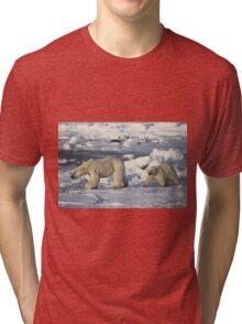 Polar Bear & Cub Walking on the Tundra, Churchill, Canada Tri-blend T-Shirt