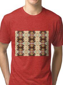 Many Fools (Pyrite) Tri-blend T-Shirt