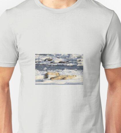 Polar Bear Mother & Cub Grooming Enthusiastically  Unisex T-Shirt