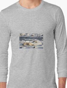 Polar Bear Mother & Cub Grooming  Long Sleeve T-Shirt