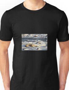 Polar Bear Mother & Cub Grooming  Unisex T-Shirt