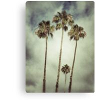 Tropic Storm Canvas Print