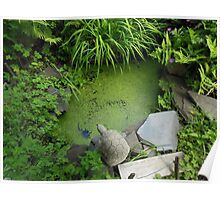 The Pond at 615 Green Poster