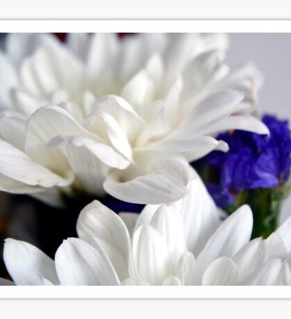 White flowers macro, natural background. Sticker