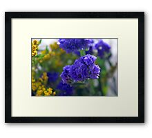 Purple flowers, nature background. Framed Print