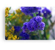 Purple flowers, nature background. Canvas Print