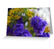 Purple flowers, nature background. Greeting Card