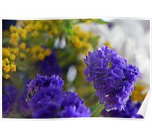 Purple flowers, nature background. Poster
