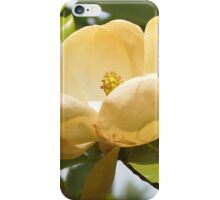 Creamy Magnolia iPhone Case/Skin
