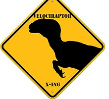 Velociraptor by Pattyice