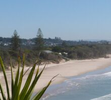 'Tweed Heads', Beach, & Pandanus. Fingal Head. NSW. North Coast. Sticker