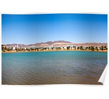 Eilat, Israel the artificial lagoon  Poster