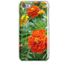 colors of marigolds iPhone Case/Skin