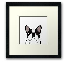 Frenchie - Brindle Pied Framed Print