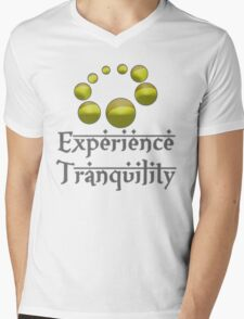 Experience Tranquility Mens V-Neck T-Shirt