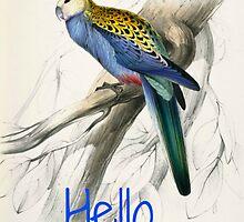 Vintage Parrot Print by dorcas13