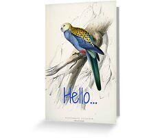 Vintage Parrot Print Greeting Card