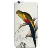 Beautiful Blacktailed Parrot Print iPhone Case/Skin