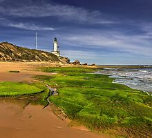Low Tide at Pt.Lonsdale by Hans Kawitzki