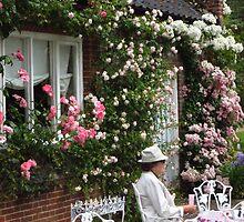 An English Rose by wiggyofipswich