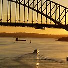 Sydney at sunrise by PhotosByG