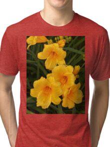 Blossoms  Tri-blend T-Shirt