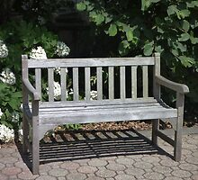 Bench Patina by Kenneth Hoffman