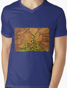 Interesting Imagery That Intrigues A Photographer ©  Mens V-Neck T-Shirt