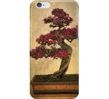 Bonsai Tree iPhone Case/Skin