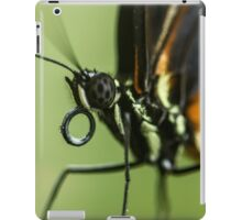 A close up of a butterfly iPad Case/Skin