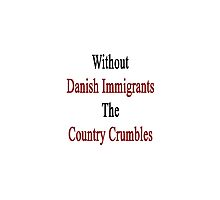 Without Danish Immigrants The Country Crumbles by supernova23
