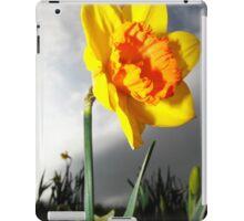 Dramatic Summer Flower Daffodil Photography iPad Case/Skin
