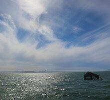 San Francisco Bay Afternoon by David Denny