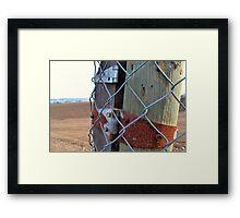 Farm & Fence Framed Print