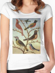 Thomas Coke Ruckle - Birds. Bird painting: cute fowl, fly, wings, lucky, pets, wild life, animal, birds, little small, bird, nature Women's Fitted Scoop T-Shirt
