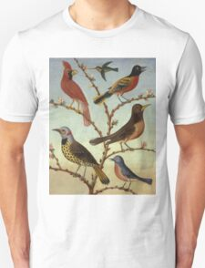 Thomas Coke Ruckle - Birds. Bird painting: cute fowl, fly, wings, lucky, pets, wild life, animal, birds, little small, bird, nature Unisex T-Shirt