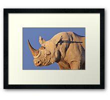 Black Rhino - Rare and Endangered Power from Wild Africa Framed Print