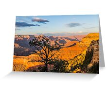 Grand Canyon - Pine Tree Silhouette Greeting Card