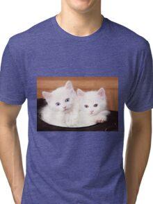 Sibling Cats Tri-blend T-Shirt