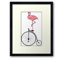 Flamingo Old Fashioned Bicycle Penny Farthing Framed Print