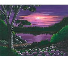 Evening In Purple Photographic Print