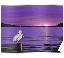 Pelican in Purple Sunset Poster