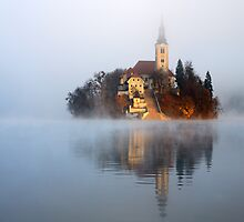 Through the mist by Ian Middleton