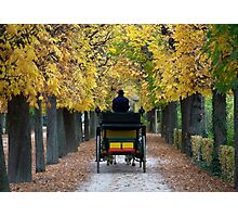 Fiacre In Chestnut Alley Photographic Print