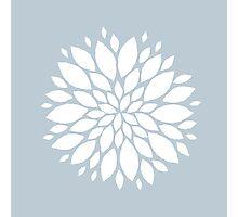 White petals #1 Photographic Print
