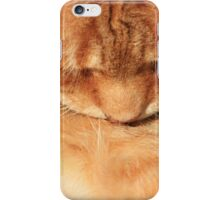 Close-up of ginger cat grooming iPhone Case/Skin